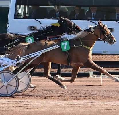 Concours Pronos Turf fr